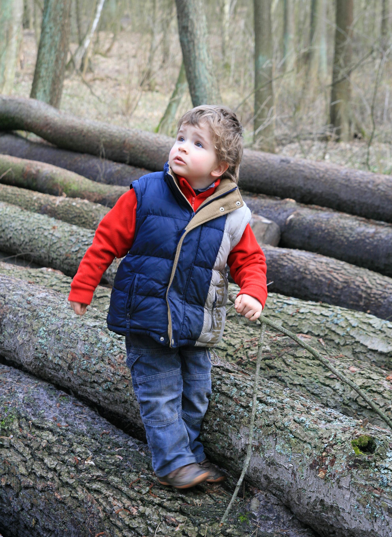 Forest Profi - Crestem impreuna